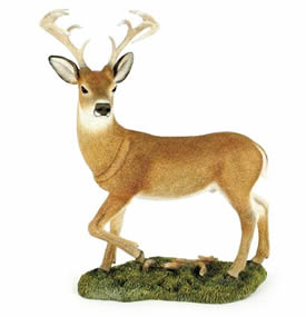 Country Artists Deer White Tailed Buck